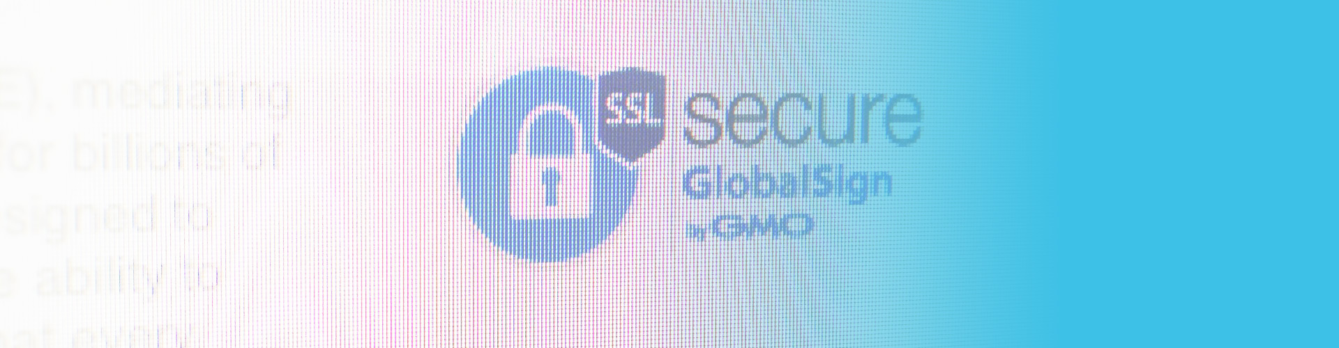 Globalsign ssl an interview with our ssl provider eurodns now offers ssl certificates they give customers the means to validate their websites and protect their online transactions xflitez Images