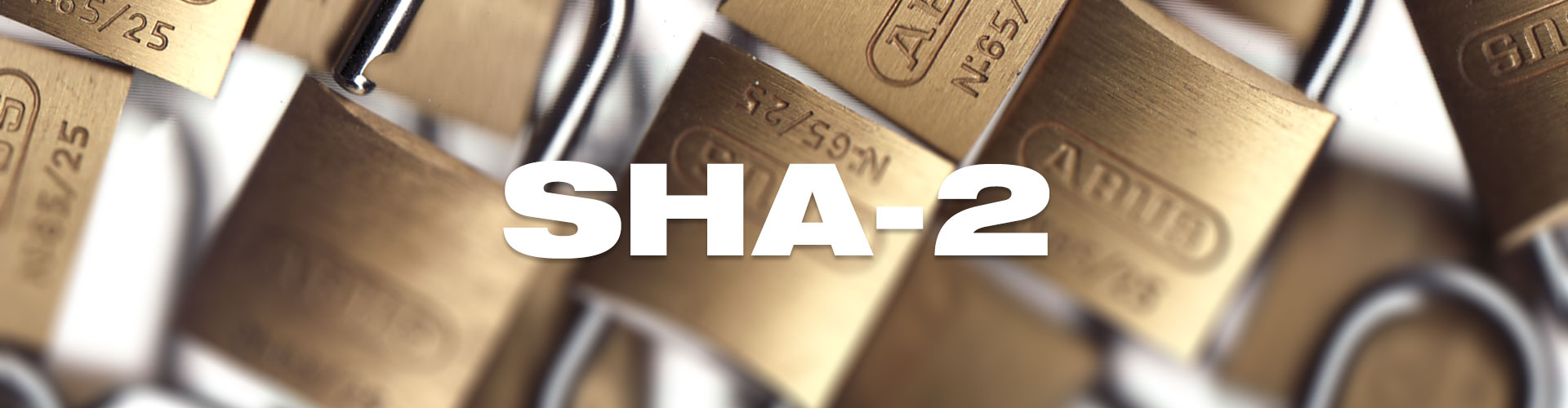 Sha 1 has been compromised switch to sha 2 quick eurodns recently launched ssl certificates a hugely significant step in its mission to secure the internet if you want people to buy your products xflitez Image collections