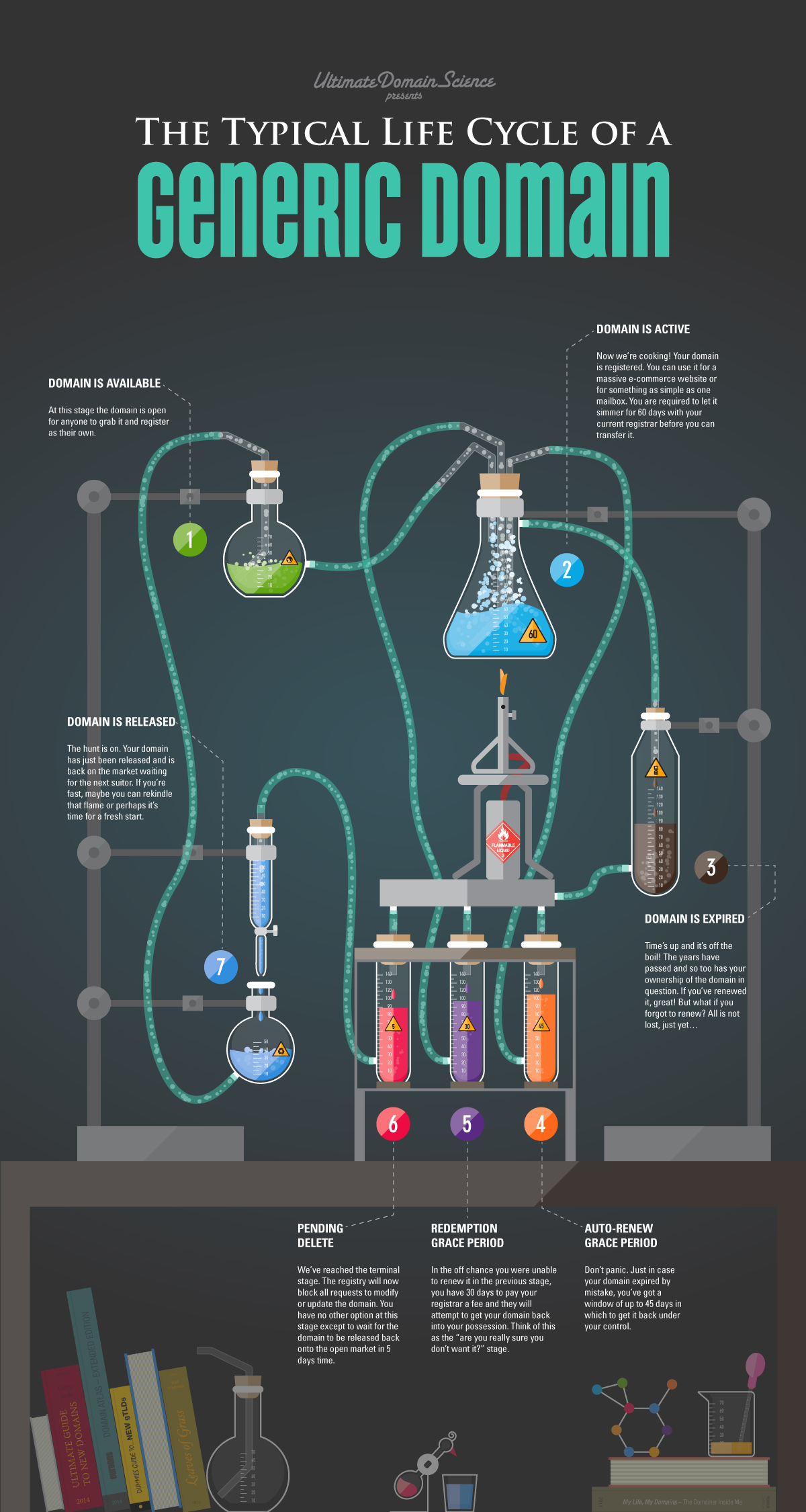 lifecycle-infographic.png#asset:8820